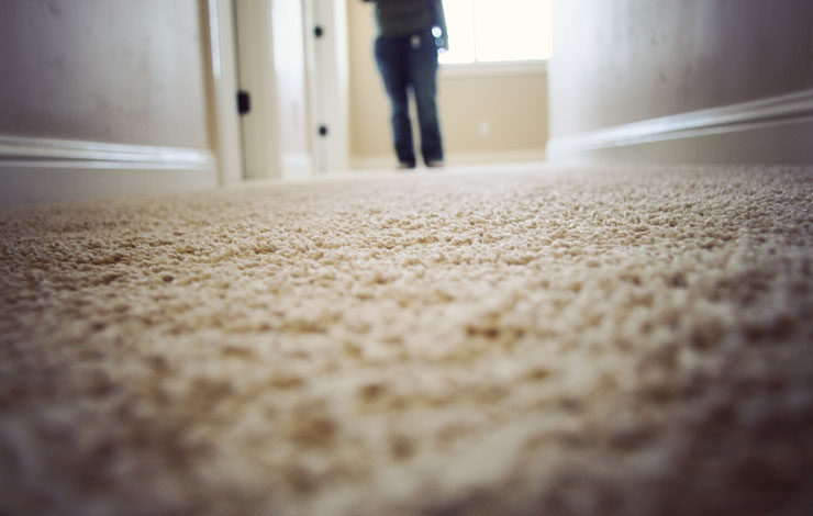 Carpets & Rugs Scotchgard Protector